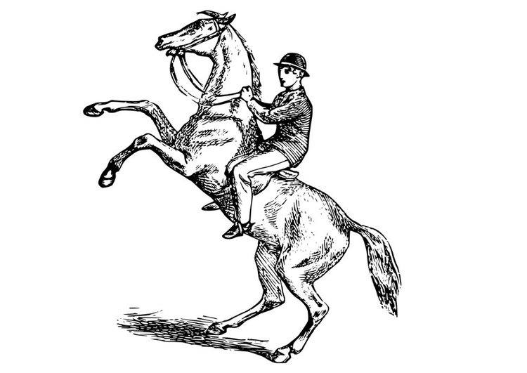Coloriage Homme Cheval.Coloriage Homme Sur Le Cheval Img 28065