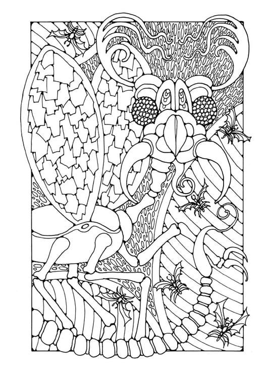 Kleurplaat Kat Moeilijk Coloriage Insecte Imagin 195 169 Img 25653 Images