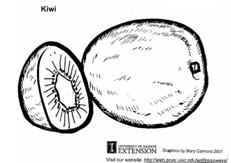 Coloriage Kiwi Fruit.Coloriage Kiwi Img 5813