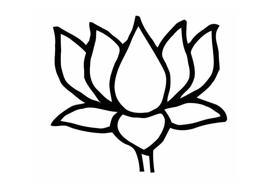 Coloriage le lotus img 11002