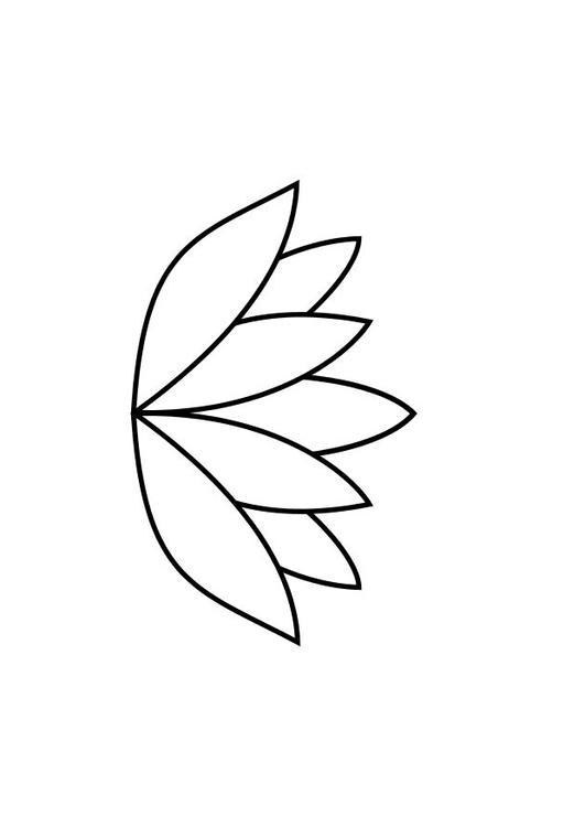 Coloriage le n nuphar img 13829 - Nenuphar dessin ...