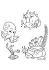 Coloriage les calmars et les poissons-globe nagent