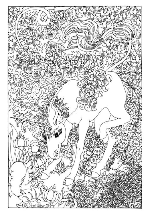 Coloriage De Licorne Et De Fee.Coloriage Licorne Img 9209