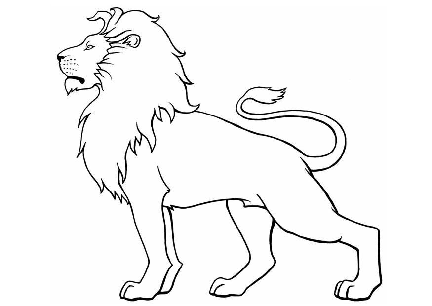 Coloriage lion img 8904 - Coloriages lion ...