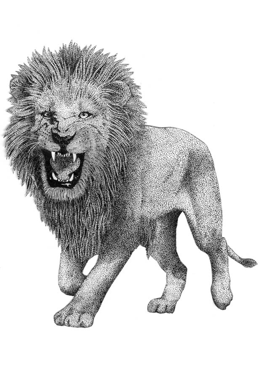 Coloriage lion img 9394 for Disegni di lupi da colorare