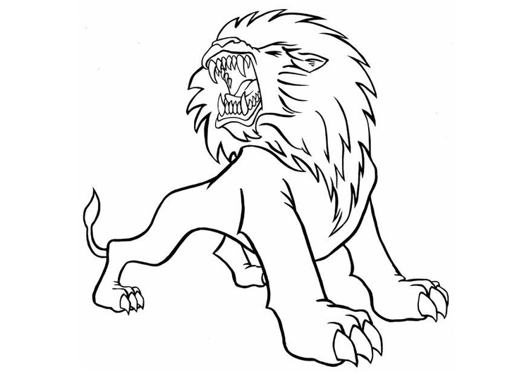 Coloriage lion fâché