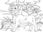 Coloriages lion