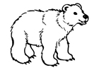 Coloriage l'ours
