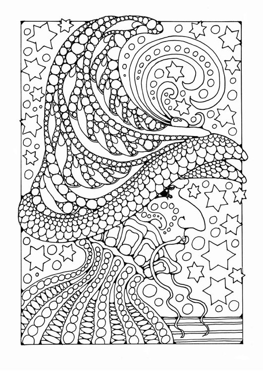 Coloriage magicien img 25646