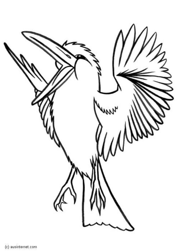 Vogeltje Kleurplaat Coloriage Martin Chasseur G 233 Ant Img 5607 Images
