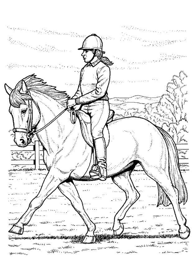 Coloriage monter à cheval - Coloriages Gratuits à Imprimer