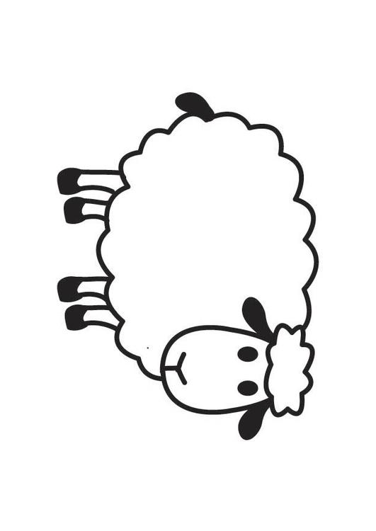 Coloriage mouton img 17767 - Mouton en dessin ...