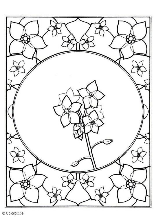 Coloriage Fleur Myosotis.Coloriage Myosotis Img 5657