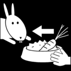 Coloriage nourrir le lapin