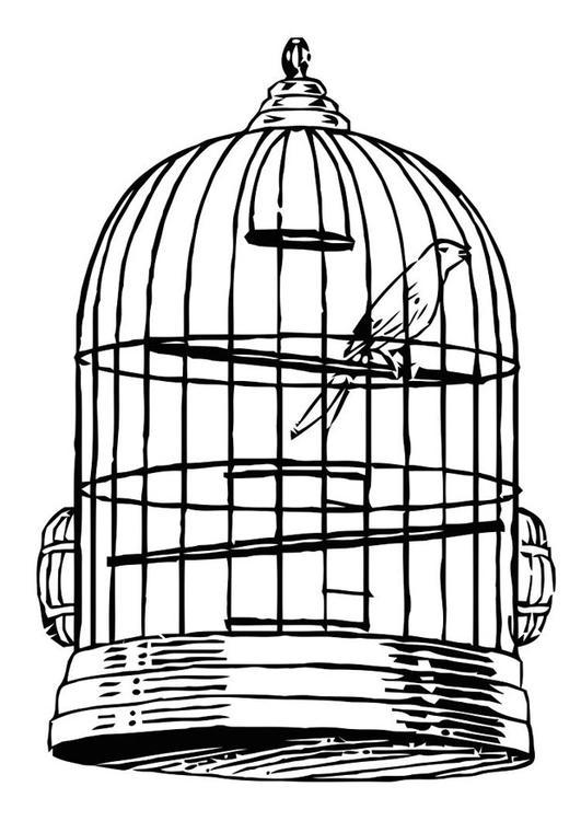 Dessin Oiseau En Cage coloriage oiseau en cage - img 20684