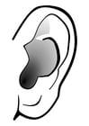 Coloriage oreille - silence