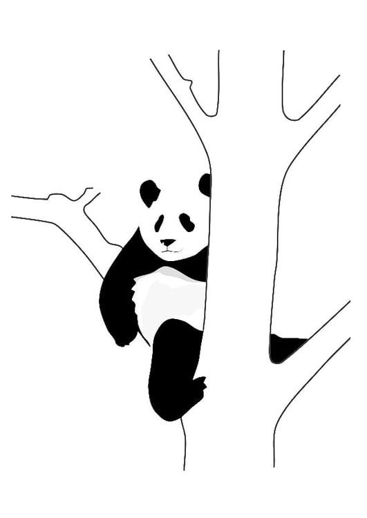 Coloriage panda dans un arbre img 19628 - Coloriage panda ...