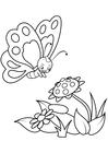 Coloriage papillon avec des fleurs