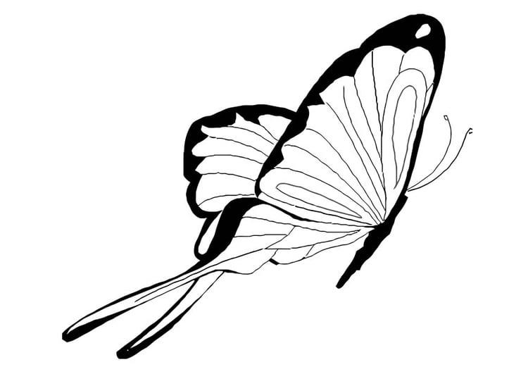 Coloriage Papillon 76 Dessin