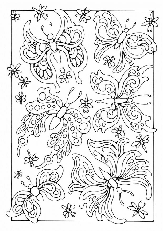 Coloriage papillons img 19575