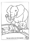 Coloriage parc naturel des elephants