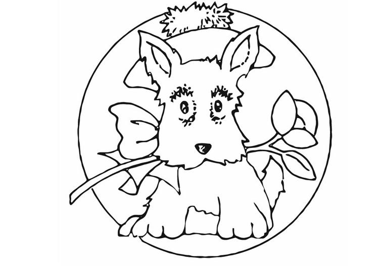 Coloriage petit chien img 16589 - Dessin petit chien ...