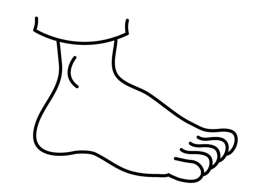 Coloriage pied img 26917 - Dessin de pied ...