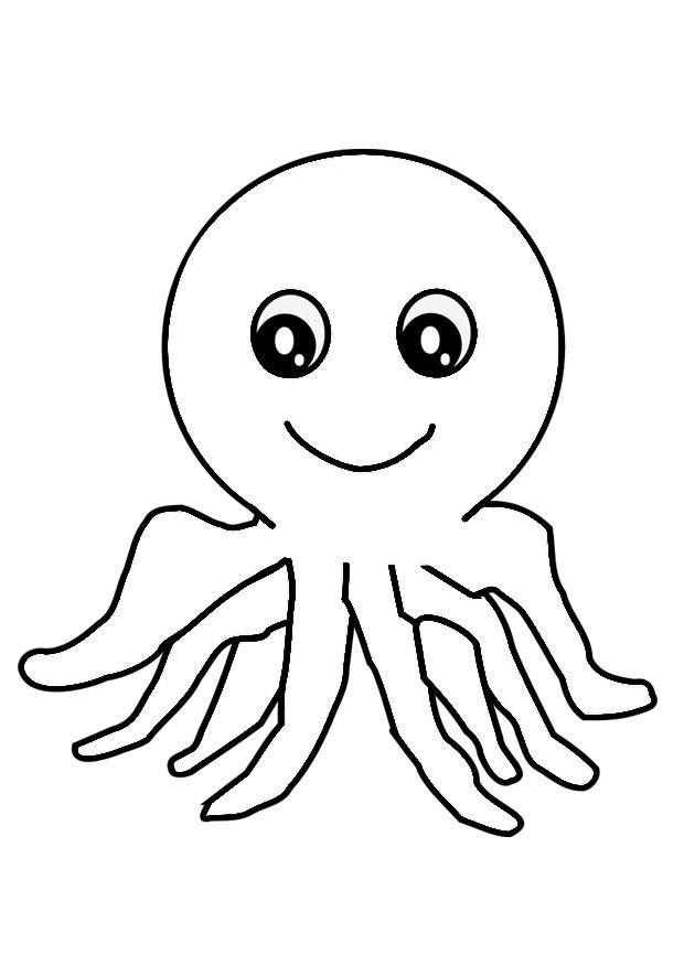 Coloriage pieuvre img 29324 - Pieuvre a colorier ...