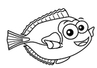 Coloriages poisson-chirurgien