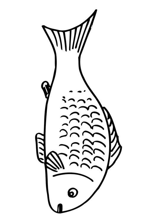 Coloriage poisson img 12502 for Manger pour poisson