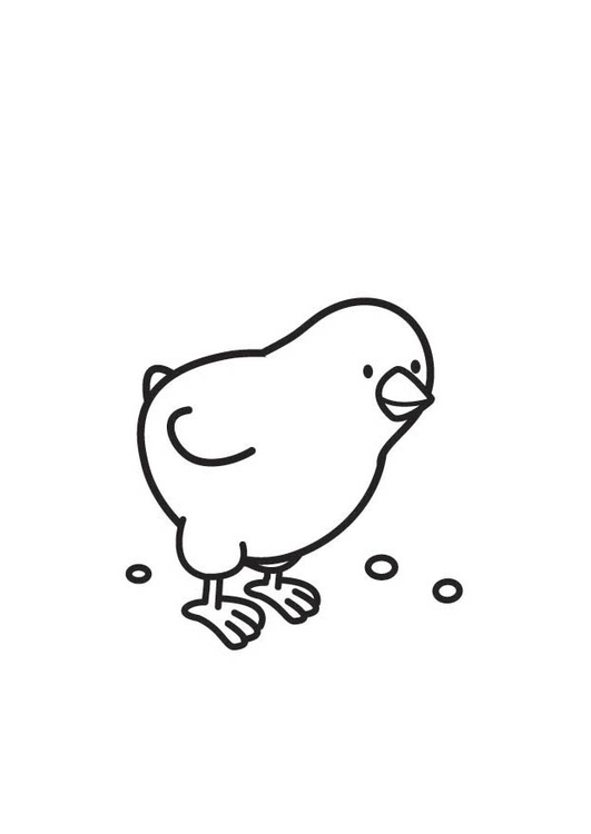 Coloriage Poussin Img 18376