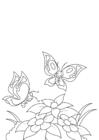 Coloriage printemps, papillons par les fleurs
