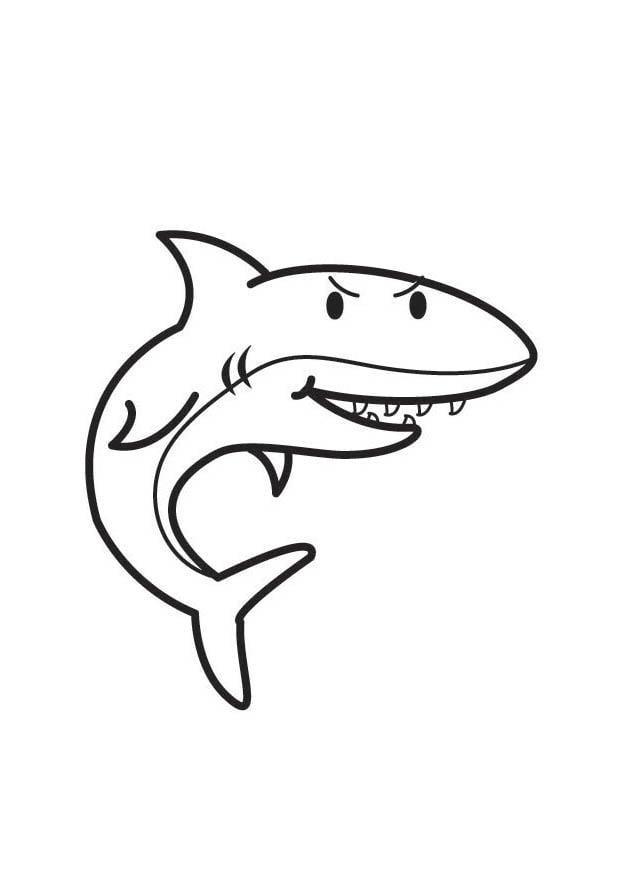 Coloriage requin img 17528 - Requin en dessin ...