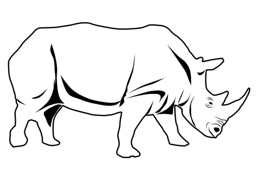 Coloriage rhinoc ros img 27337 - Rhinoceros dessin ...