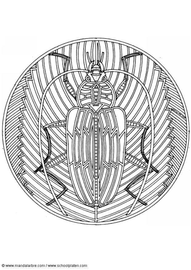 Coloriage scarab e img 4549