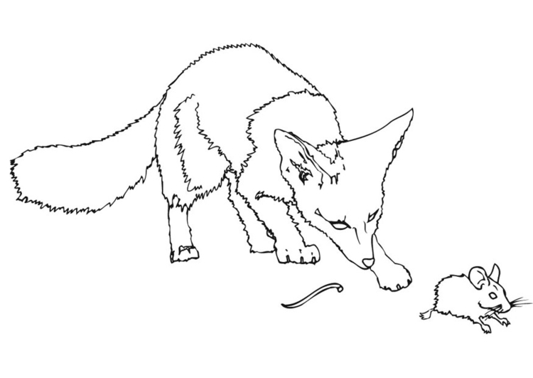 Volwassen Kleurplaat Wolf Coloriage Souris 233 Pineuse Rate Son D 233 Part Dessins