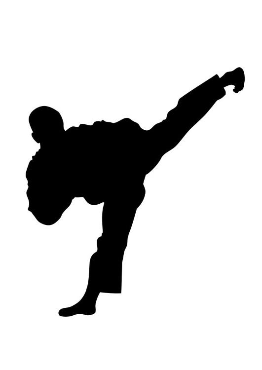 White Kid Kung Fu Black