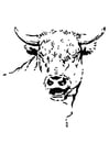 Coloriage taureau