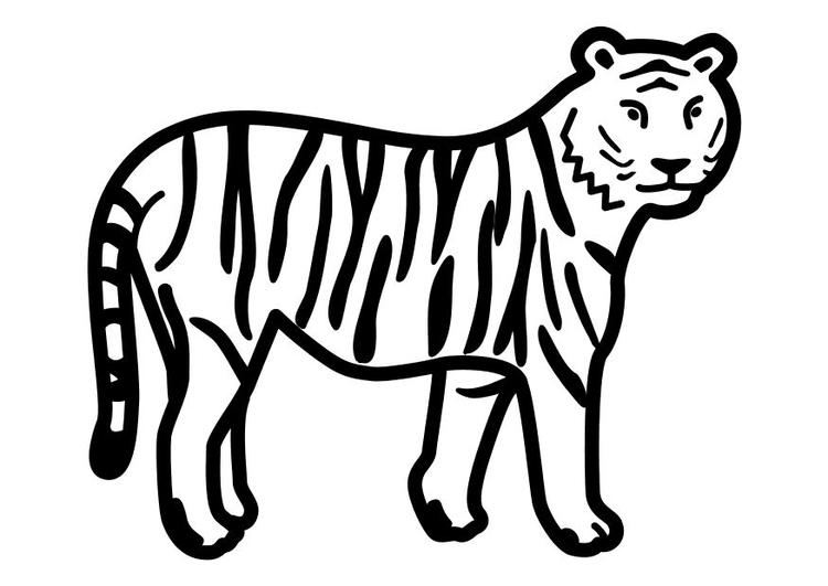 Coloriage tigre debout img 10491 - Coloriage tigre ...