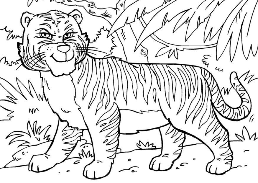 Kleurplaten Dieren Uit De Jungle.Kleurplaten Jungle Dieren Tijger Ausmalbilder Zoo Ausmalbilder Zum