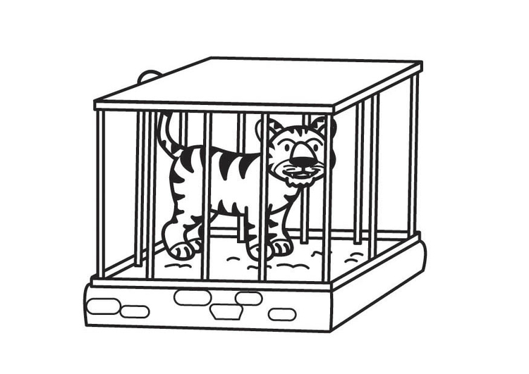 Coloriage Tigre En Cage Coloriages Gratuits A Imprimer Dessin 17709