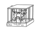 Coloriage Tigre en cage