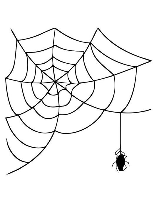 coloriage toile avec araigne - Coloriage Toile