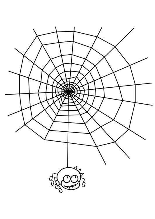 Coloriage Toile D Araignée Avec Araignée Img 19076