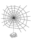 Coloriage toile d'araignée avec araignée