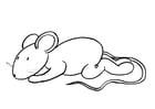 Coloriage Transi, la souris