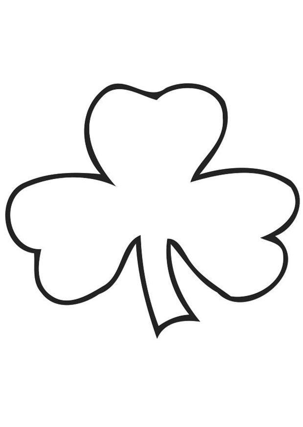 Coloriage tr fle irlandais shamrock img 21703 - Shamrock foglio da colorare ...
