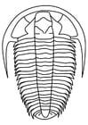 Coloriage trilobites