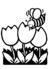 Coloriage tulipes avec abeille