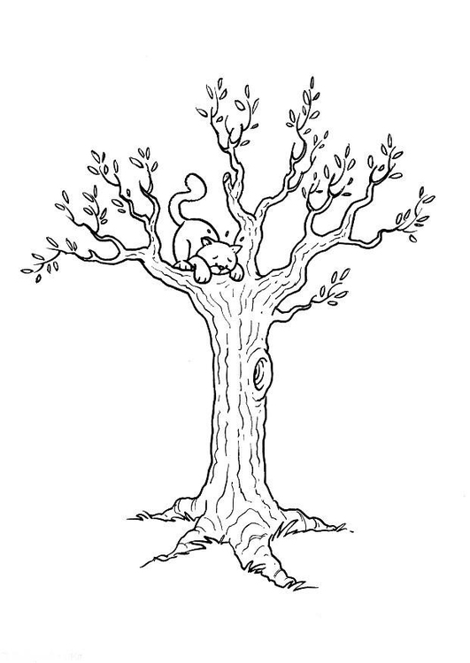 Photo Coloriage Arbre.Coloriage Arbre A Chat Laborde Yves